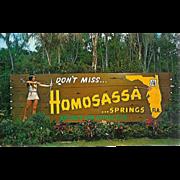 FL Homosassa Springs Indian Maiden Roadside Attraction Florida Map Postcard 60s
