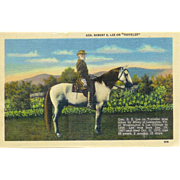 Confederate Civil War General Robert E Lee on Traveler his Horse postcard Linen