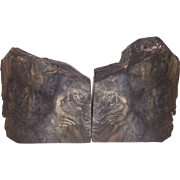 Petrified Wood Bookends-Ghost Tiger Face