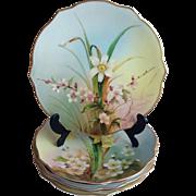 Set of 6 Royal Worcester Hand Painted Botanical Plates c.1905 England
