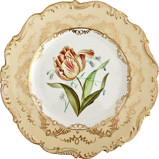 Ridgway dinner plate, sublime botanical study, 1850