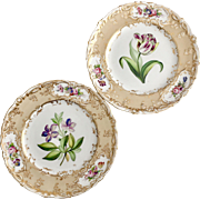 Set of 2 Coalport dinner plates, moulded edge and hand painted flowers, 1839-1845