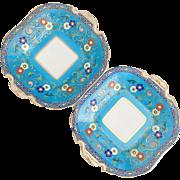 Pair of Antique Minton plates, patt. G623 cloisonné style Christopher Dresser, ca 1870