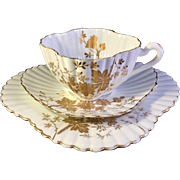 Antique Wileman English teacup Alexandra shape with Asters pattern, 1889