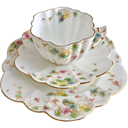 Antique Wileman teacup trio, Daisy shape with Violets pattern, 1903