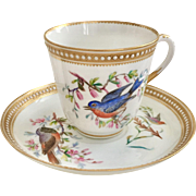 Very rare Royal Worcester teacup with hand painted birds, ca 1868