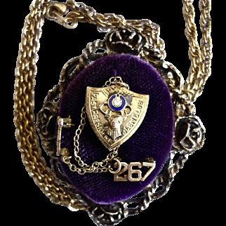 Vintage Elks Lodge Past President Pin on Vintage Velvet Display Necklace