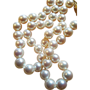 Vintage 1960s 14k Yellow Gold Filigree Clasp 7.5mm Cultured Akoya Pearl Necklace Strand