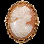 Shell Cameo brooch / pendant