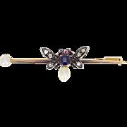 Antique Pearl Sapphire Diamond Bug Pin Brooch