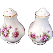 Vintage Royal Albert Salt & Pepper Bone China England Floral Flower Pattern S&P
