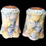 Vintage Early Nippon Salt & Pepper Shakers Hand Painted Flowers