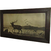 An Elk in the Lake. Vintage Framed Lithograph with Glass.