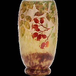 Daum Nancy Art Nouveau Rosehip Cameo Glass Vase C.1900
