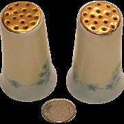 Vintage Hand Painted Blue Forget-Me-Not Porcelain Salt Pepper Shakers