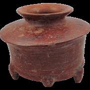 Colima Zoomorphic Olla (pot)
