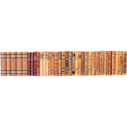 Early 20th Century Leather Bound Library Books Series 17/18