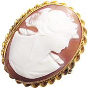 Vintage Hand Carved Shell Cameo Brooch Gold Filled 1920s