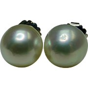 White south sea pearl earrings 13.25-13.5 millimeters