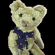 Teddy bear with pale gold mohair circa 1920's