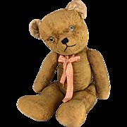 Antique teddy bear, large, short velveteen gold fur