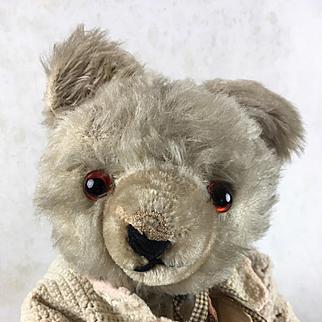 Antique or vintage teddy bear, mohair teddy bear with sweater, character teddy bear