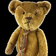 Antique mohair teddy bear, antique large teddy bear, short pile gold fur