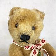 Mohair teddy bear, perfect doll companion