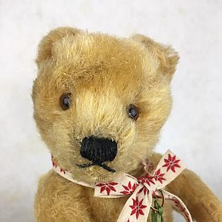 Antique mohair teddy bear, antique teddy bear, perfect doll companion