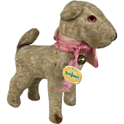 Velveteen German miniature dog