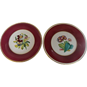 Pair of Early 19th Century English Cabinet Plates with Hand Painted Flowers & Magenta Trim