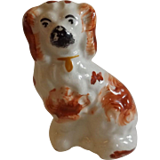 Small 19th Century English Staffordshire Spaniel