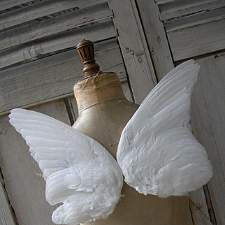 Pair Victorian 19th Century millinery hat wings - angel / fairy wings