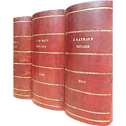 Set of 3 large antique French 19th century leather book boxes - box files - gentleman's library storage