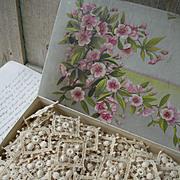 Vintage chocolate box containing 140 vintage 1920s  Schiffli lace unused appliques