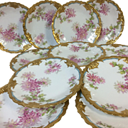 Fine Set of 11  Limoges Plates With Gold & Chrysanthemum Decoration 8.75""