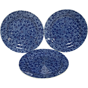 "Set of 3 Beautiful Blue Floral Decorated Wedgwood 8"" Plate"