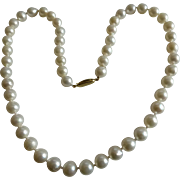 "Fine Row of 18"" Cultured Pearls"