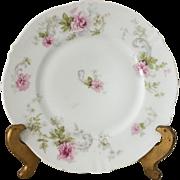 Theodore Haviland Limoges Plates (8) - ca: 1903