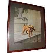 "Vintage Maud Earl Print of a Brussels Griffon Dog, ""Le Brave Belge"", Original Glass and Frame, Wood Back"