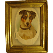 Wonderful Victorian Jack Russell Terrier Dog CDV Carte de Visite or Post Card, Color, Framed