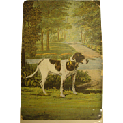Lovely Victorian Era Full Color Postcard with Foxhound in Wooded Setting