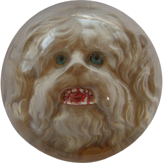 1800's Domed Glass Dog Intaglio Paperweight Featuring a Maltese or Lhasa Apso Showing Teeth, Rarely Seen Beautiful Condition