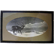 Framed 1800's Black and White Elk Print