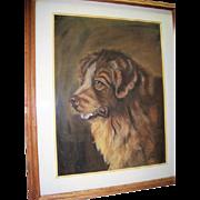 Saint Bernard Pastel 1914 By Ruth Buck