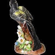 Staffordshire Fine Bone China Bird - Designed & Modeled By J.T. Jones