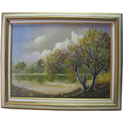Framed Oil on Canvas - Landscape - By Edith Fisher
