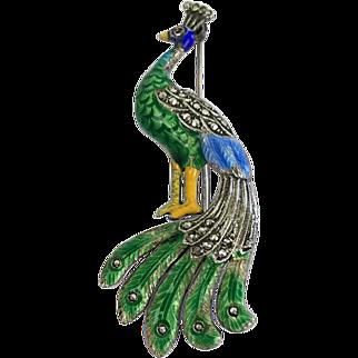 A 935 silver enamel brooch - peacock - Germany - 1920-1940