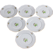 Set of Six Herend Rosehip Pattern Large Dessert Plates, 6 Pieces