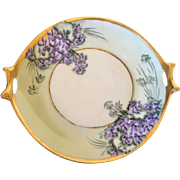 Bavaria Germany hand painted with floral design Hutschenreuter Selb serving plate Circa 1857-1920